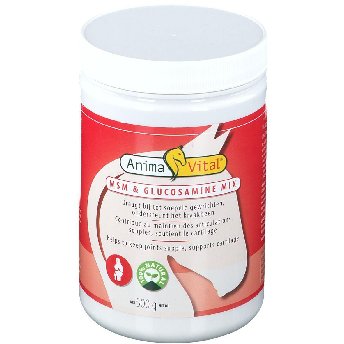 Image of Anima Vital® MSM Glucosamin für Pferde
