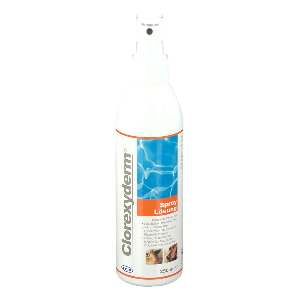 Image of Clorexyderm® Lösung Spray